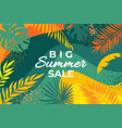 summer banner with tropical leaves abstract vector image