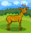 wild deer cartoon vector image vector image