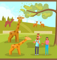 zoo animals flat style design vector image vector image