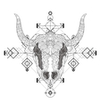 Front view of yak head doodle vector image