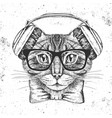 hipster animal cat hand drawing muzzle of animal