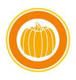 pumpkin fresh harvest sticker vector image