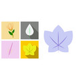 set of treesleaves and flowers in flat concepts vector image vector image