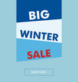 winter sale vertical banner with oblique back vector image vector image