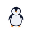 cute cartoon penguin on white vector image vector image