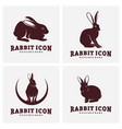 set rabbit design silhouette rabbit vector image