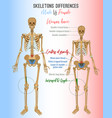 skeleton differences image vector image vector image