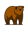 Big brown grizzly or brown bear vector image vector image
