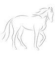 black line horse on white background icon vector image vector image