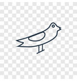 seagull concept linear icon isolated on vector image