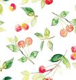 seamless pattern cherries vector image vector image