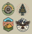 vintage camping colorful emblems vector image vector image