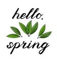 Hello spring Handwritten vector image vector image