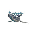 oh my whale vector image vector image
