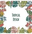 tropic design border frame vector image vector image