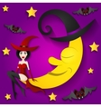 witch on the moon vector image vector image