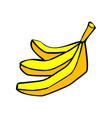 banana bunch isolated yellow fruit on white vector image