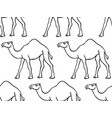 camel contour pattern vector image vector image