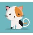cat cartoon pet design vector image