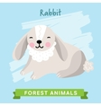 Rabbit forest animals vector image vector image