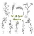 Set of isolated field plants in sketch style vector image vector image