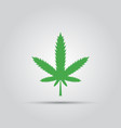 green marijuana leaf isolated colored icon vector image