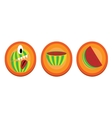Set of melons icons vector image