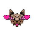 dog terrier fall in love meme sticker vector image vector image
