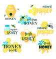 honey set with lettering flat isolated vector image