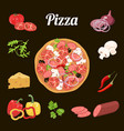 Pizza and ingredients vegetables salami cheese