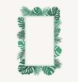 rectangular border frame green tropical leaves vector image vector image