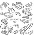 set sea food products vector image