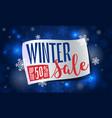 winter final sale concept banner cartoon style vector image vector image