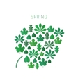 Green spring leaves vector image