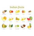 indian fruits set india food vector image vector image