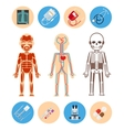Medical infographics elements vector image