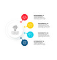 circle infographic with 4 options structure chart vector image