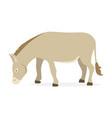 farm animal donkey vector image vector image