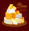 plate with different types of sliced cheese vector image vector image