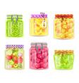 preserved fruits and vegetables in glass jars set vector image