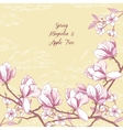 Background with magnolia and apple tree vector image