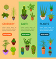 green plants in pot banner vecrtical set 3d vector image vector image