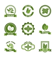Mint leaves logos label emblems set vector image