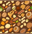 nuts in shells and kernel seeds seamless pattern vector image