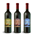 set wine bottle with label wine and grapes vector image vector image