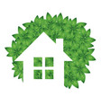 eco house and green leaves vector image