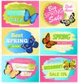 best choice big spring sale labels set butterflies vector image