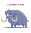 Cartoon Indian Elephant isolated on white vector image vector image