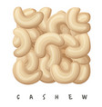 cashew nuts square icon cartoon vector image