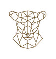 geometric head of a lioness wild animal vector image vector image